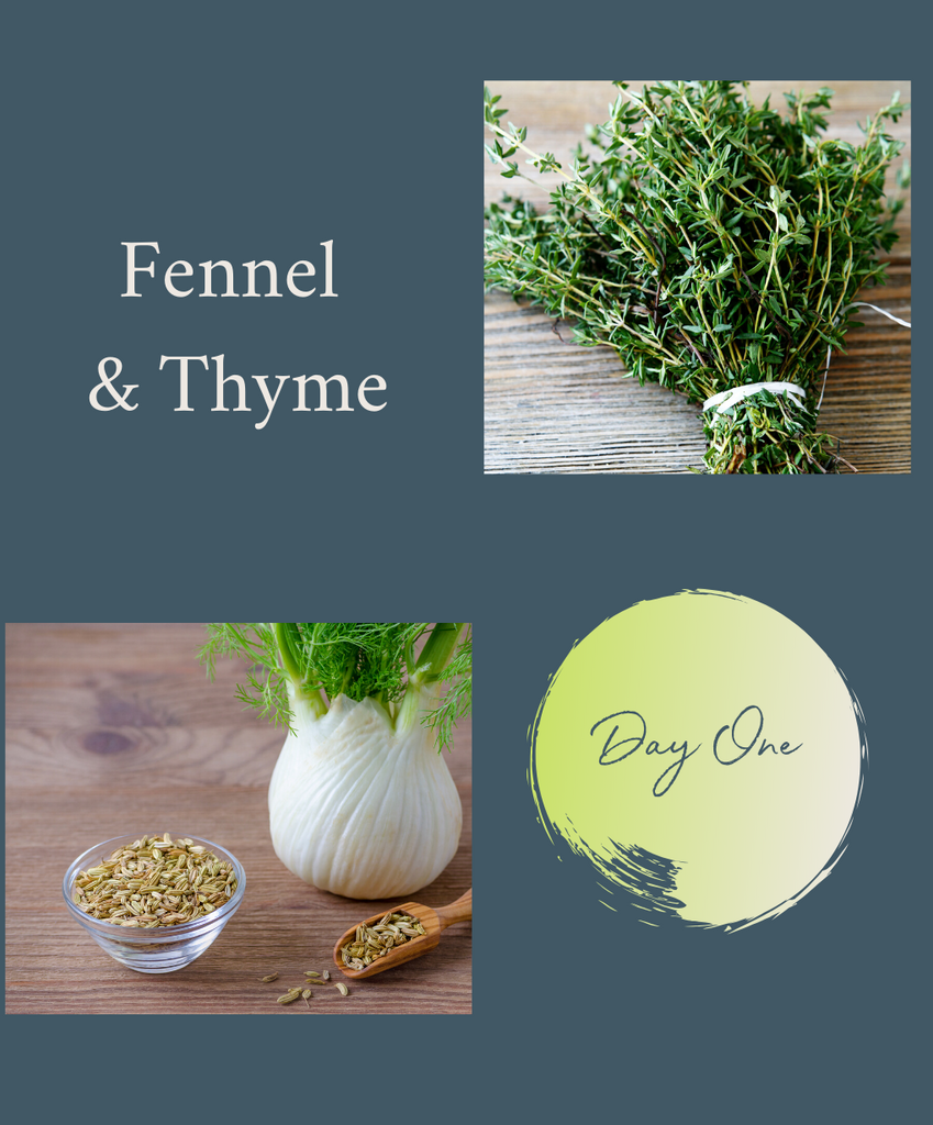 5-DAY HERBAL RESET CHALLENGE: DAY 1 FENNEL & THYME