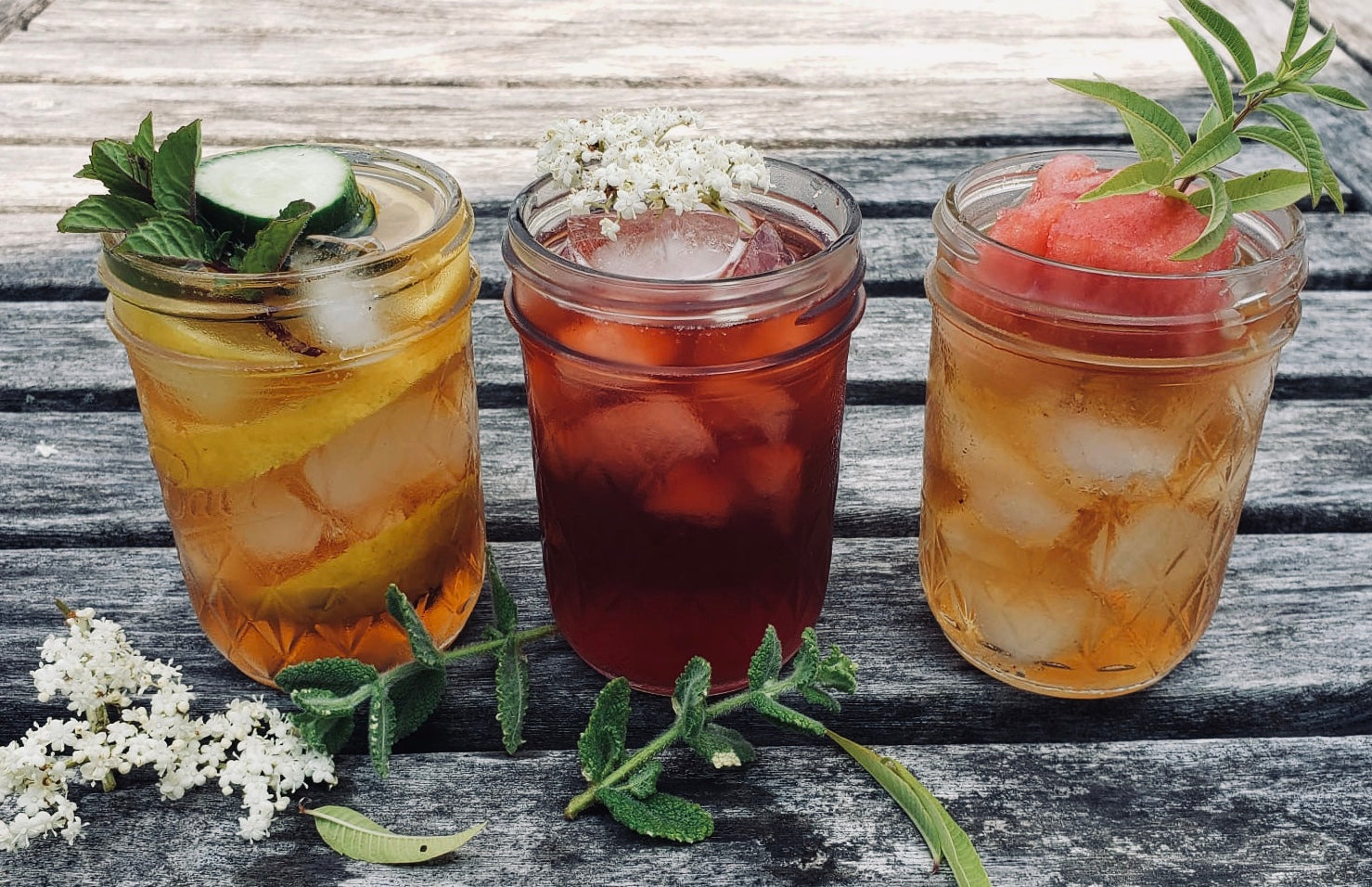 Wild-Roots-Apothecary-Iced-Wellness-Teas