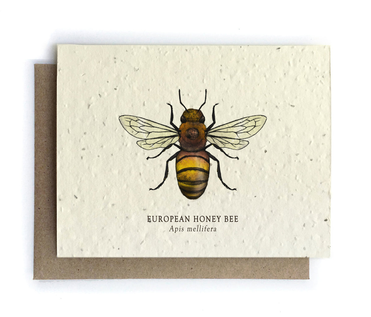 The Bower Studio - Honey Bee Greeting Cards - Plantable Seed Paper