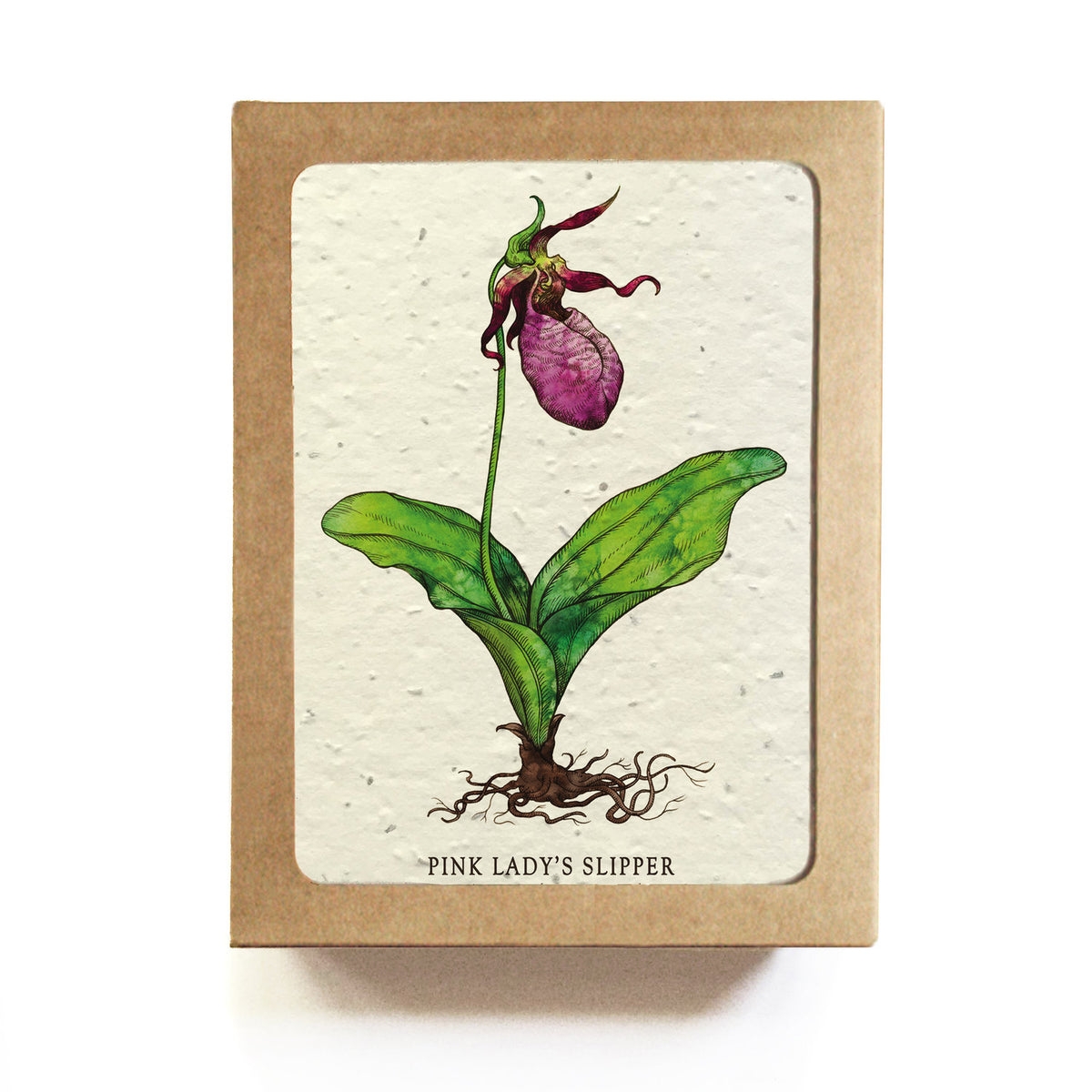 The Bower Studio-  Lady Slipper Botanical Greeting Cards Plantable Seed Paper