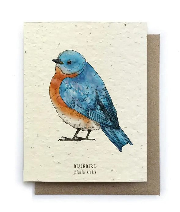 The Bower Studio - Bluebird Greeting Cards - Plantable Seed Paper