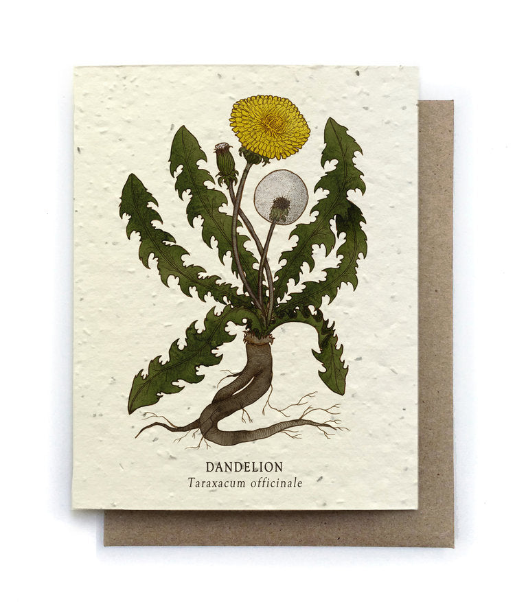 The Bower Studio - Dandelion Greeting Cards - Plantable Seed Paper