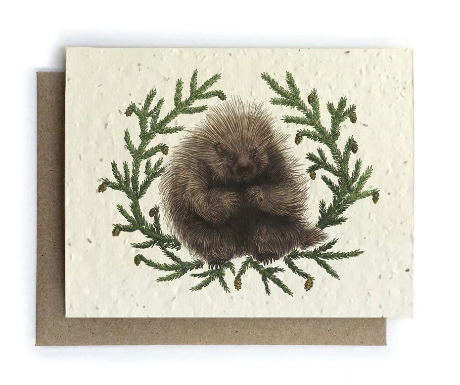 The Bower Studio - Porcupine and Hemlock Greeting Cards - Plantable Seed Paper