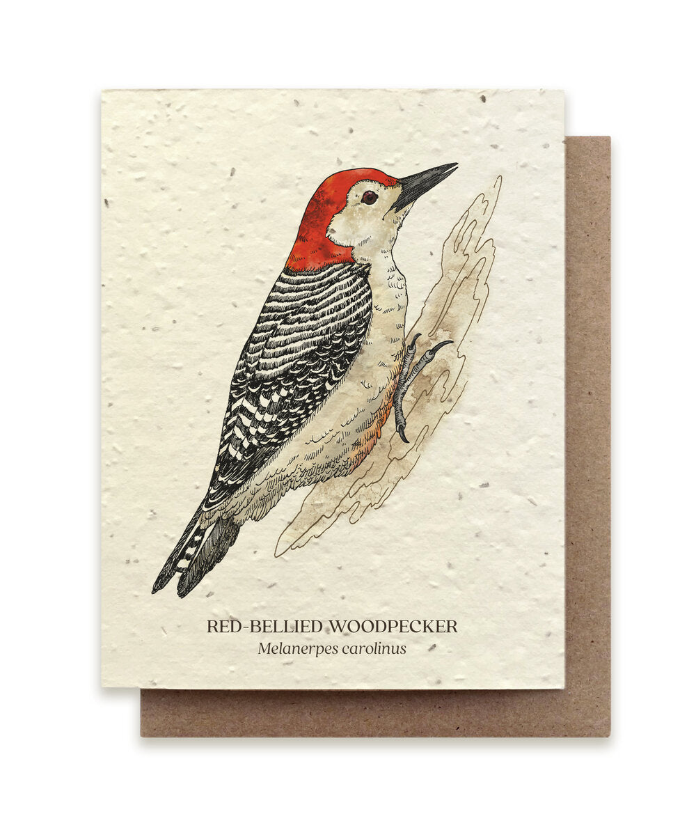 The Bower Studio-  Woodpecker Botanical Greeting Cards Plantable Seed Paper