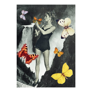Butterflies Go Flutter by