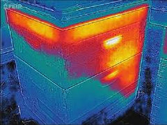 Thermal Image of a Hive in Winter