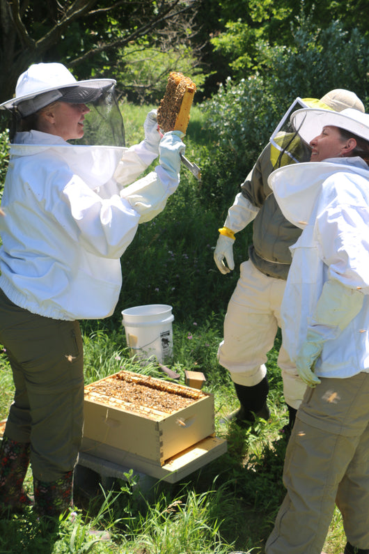 Bee School Enrollment through:  Ann Arbor Backyard Beekeepers Club