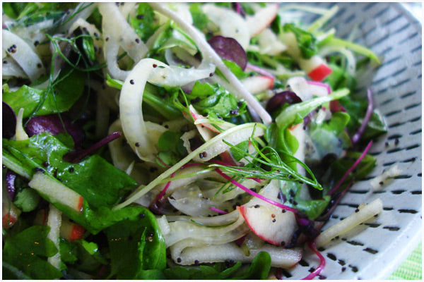 Fennel & Apple Salad