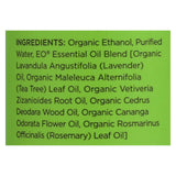 Eo Organic Deodorant Spray - Tea Tree - 4 Fl Oz. - Organicotc.com