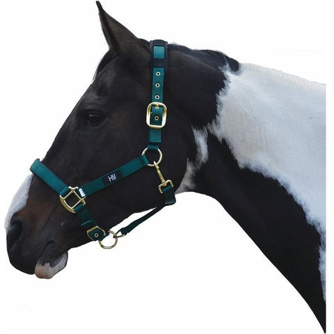 4Equine.com - Hy Deluxe Padded Head Collar