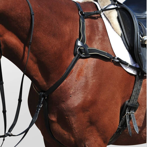 The Collegiate 5-Point Breastplate II from Collegiate, available at 4Equine.com