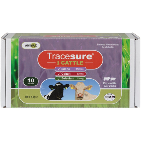 Animax Tracesure-I Bolus For Cattle