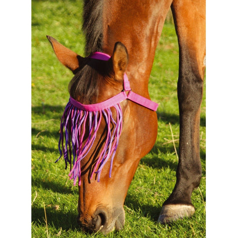 The JHL Halter Fringe from JHL, available at 4Equine.com