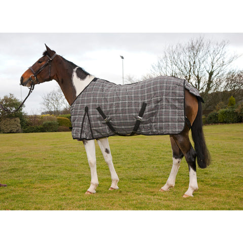 Protack Stable Rug