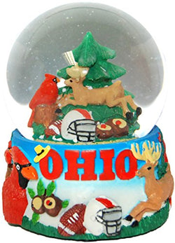 Collection of City and States Detailed 65mm Snow Globes (Ohio)
