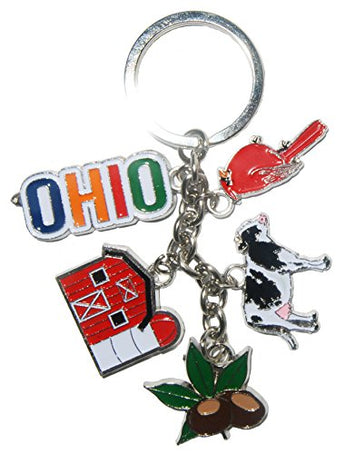 State of Ohio 5 Charm Keychain Featuring Charms of Ohio