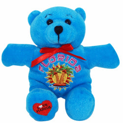 Blue bright cute florida teddy bear