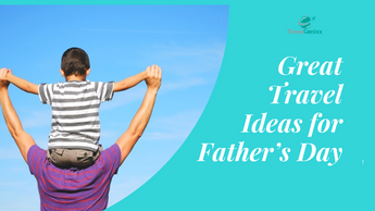 Great Travel Ideas for Father's Day