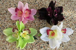 Orchid Hair Clip White Pink Purple