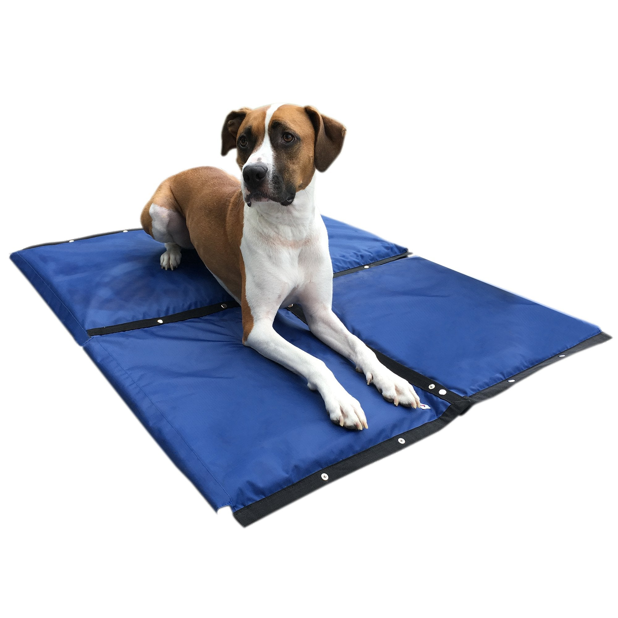 Hydro Cooling Mat 4 Pack Large Sized Dogs