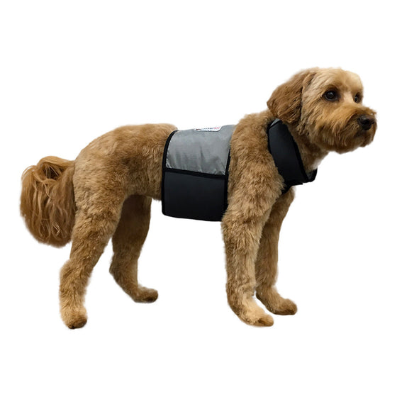 Cooling Vest and Cooling Collar (Medium Dogs)