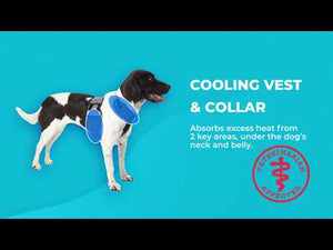 Cooling Vest and Cooling Collar (Small Dogs)