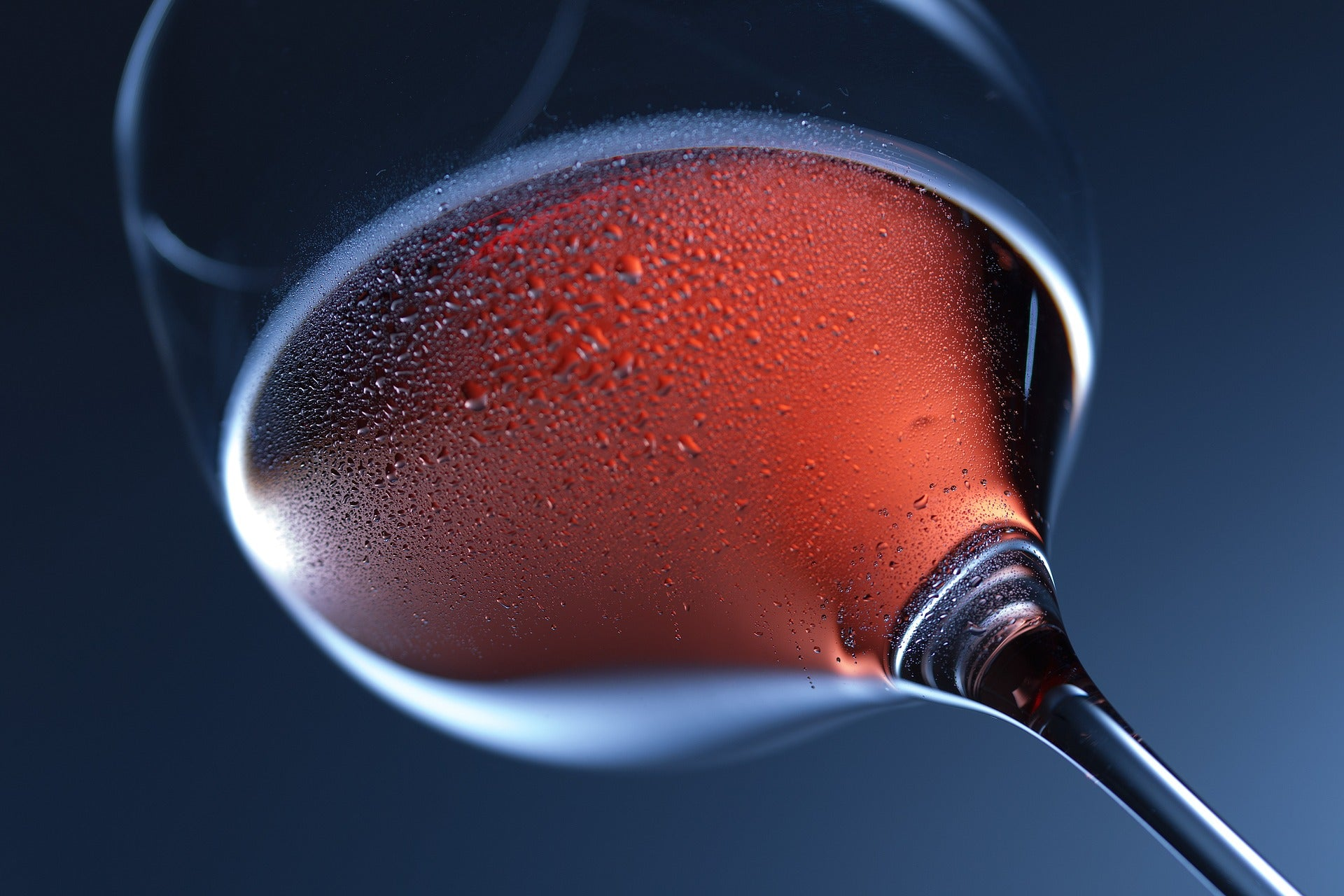 The Mini Guide to Rose Wine