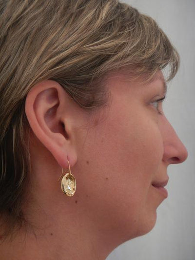 Baby Paua Earrings - Gold Plated