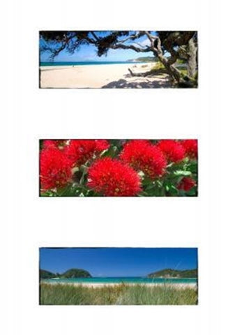 MATTED PHOTO- Northland triptych