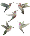 Printed Aluminium Hummingbird Set