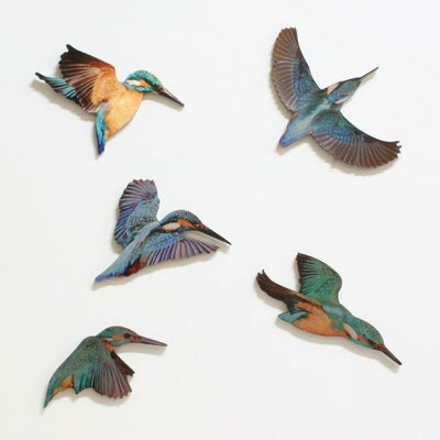 Printed Aluminium Kingfisher Set