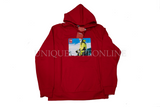 Supreme The North Face Photo Hooded Sweatshirt FW18 Red