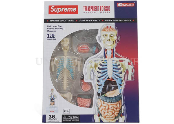 Supreme Anatomy Model FW18