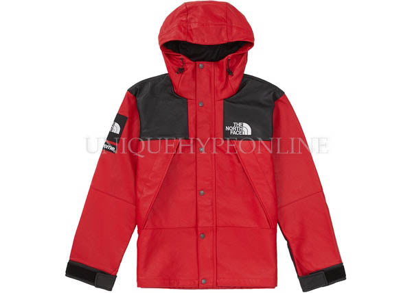 Supreme North Face Leather Mountain Parka FW18 Red