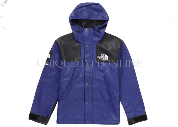 Supreme North Face Leather Mountain Parka FW18 Royal