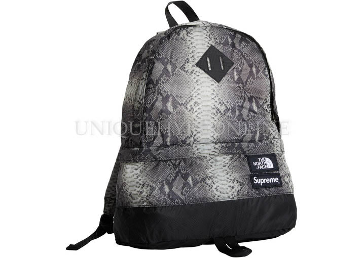 Supreme The North Face Snakeskin Lightweight Day Pack SS18 Black