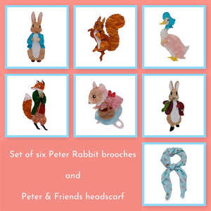 Full Set of 6 new Erstwilder Peter Rabbit Brooches plus Peter and Friends Headscarf