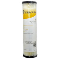 24 Pack Pentair Pleated Cellulose Filter Cartridge S1 155001-43 - Free Purity