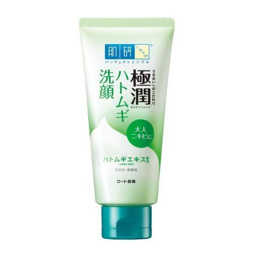 Rohto Hada Labo Gokujyun Medicated Face Wash | ROHTO HADA LABO | My Styling Box