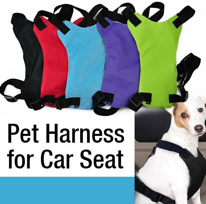 Car Safety Seat Belt Harness - Dogs Heaven Store
