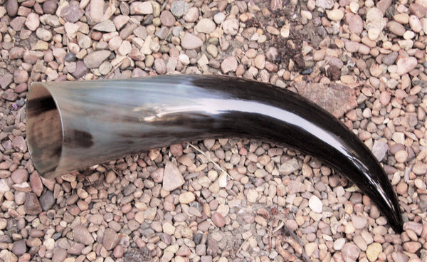 Large Viking Drinking Horn