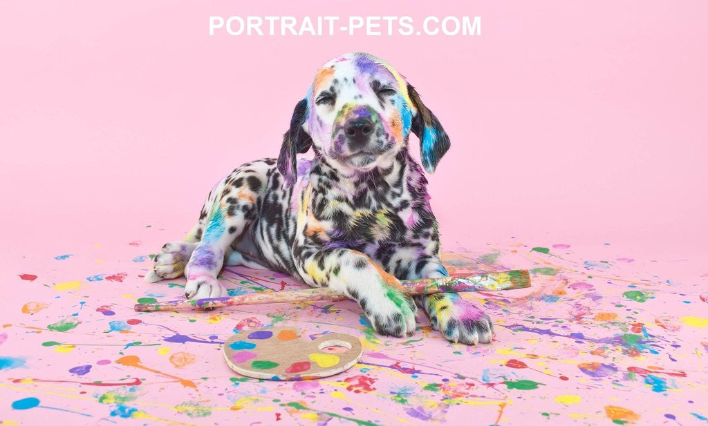 Select A Best Pet Portrait Artist - Portrait Pets
