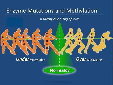 Difference undermethylated vs  overmethylated (symptoms