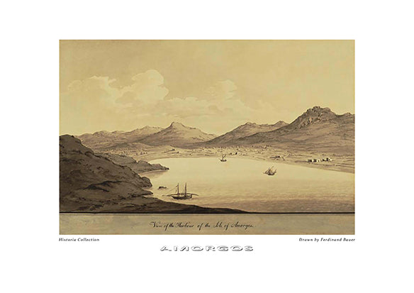 Ferdinand Bauer: Amorgos-Ariston Books