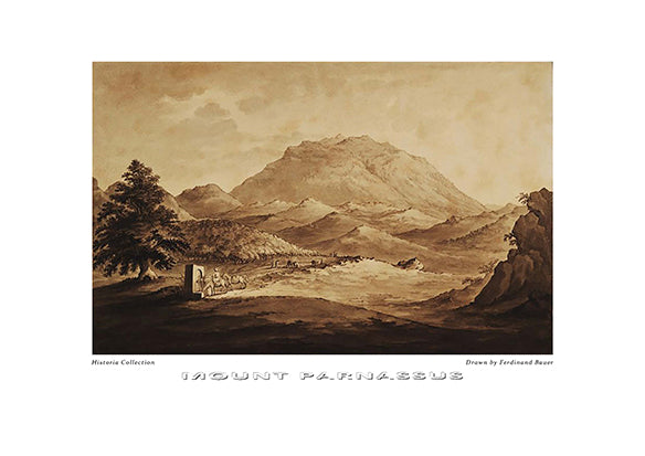 Ferdinand Bauer: Mount Parnassus-Ariston <books