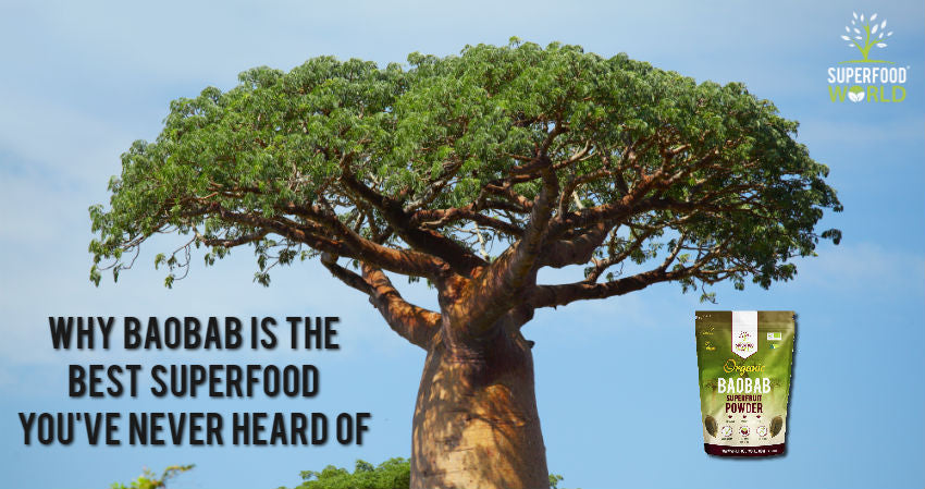 Why Baobab is the Best Superfood You've Never Heard Of