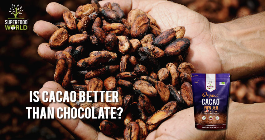 Is Cacao Better than Chocolate?