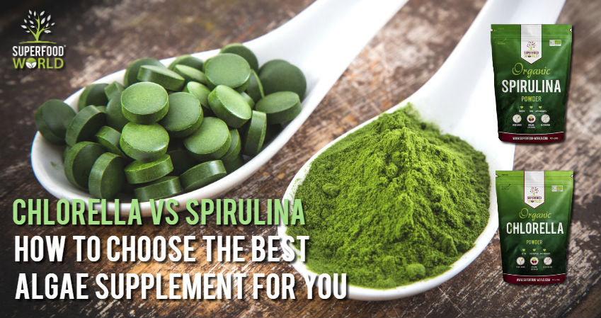 Chlorella vs Spirulina - How to Choose the Best Algae Supplement for You