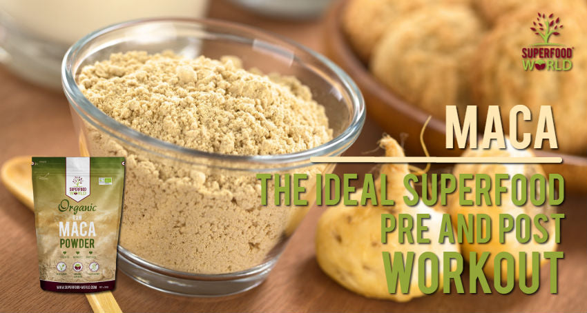 Maca: The Perfect Superfood for Your Pre and Post Workout Routine