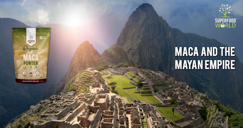 Maca and the Mayan Empire